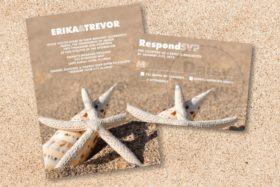Sandy Starfish package
