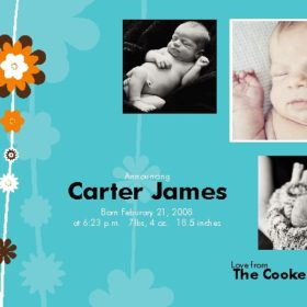 Birth Announcement - Flowers 2